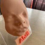 Rostro de Abril en la ecografía 5D impreso en 3D